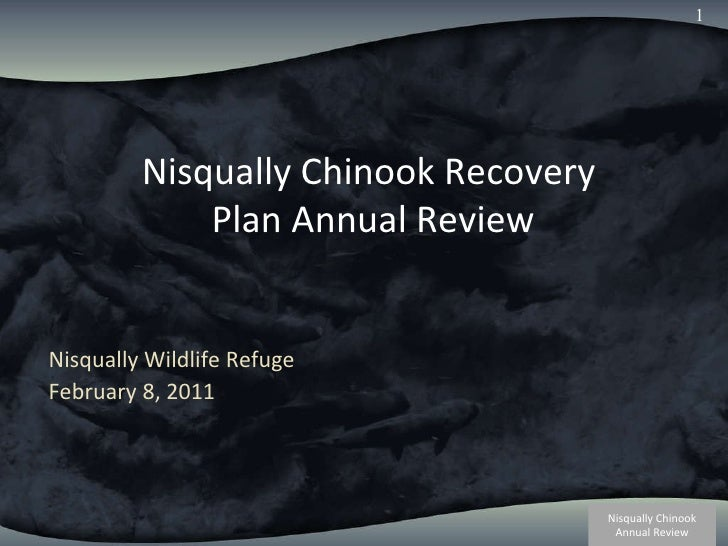 Nisqually Chinook Recovery  Plan Annual Review Nisqually Wildlife Refuge February 8, 2011