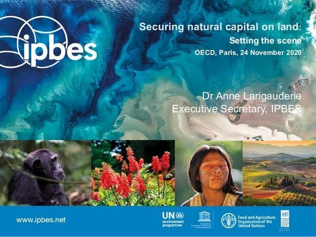 Securing natural capital on land: Setting the scene OECD, Paris, 24 November 2020 Dr Anne Larigauderie Executive Secretary...