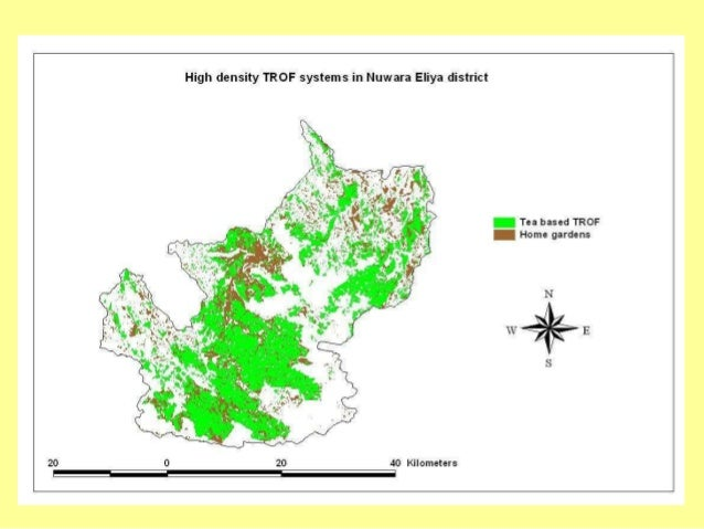 Carbon Content in Different TROF systems of Nuwara Eliya District TROF system Extent Weight at 20% M.C. Carbon content (kg...