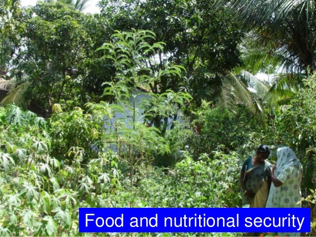 Food and nutritional security
