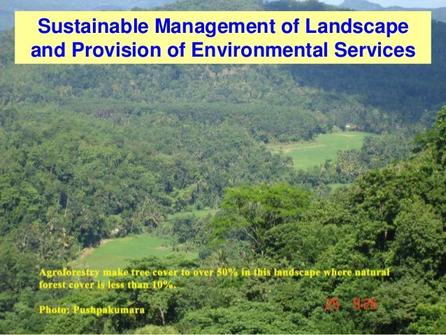 Sustainable Management of Landscape and Provision of Environmental Services