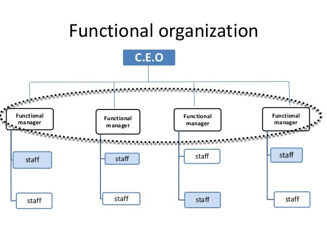 evaluate the organizing function of management for costco Functions of management:planning, organizing staffing strategic management business the organizing function of management.