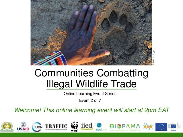 Communities Combatting Illegal Wildlife Trade Online Learning Event Series Event 2 of 7 Welcome! This online learning even...