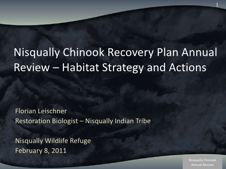 1<br />Nisqually Chinook Recovery Plan Annual Review – Habitat Strategy and Actions<br />Florian Leischner<br />Restoratio...