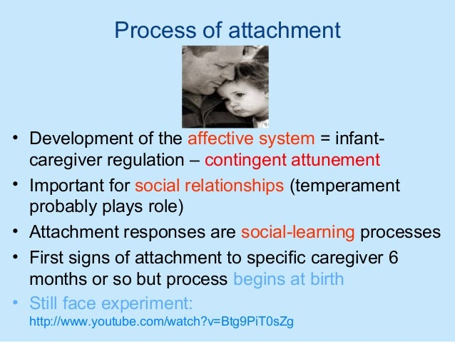 human attachment theory Bowlby attachment theory bowlby child development john bowlby was a psychoanalyst mothers are the exclusive carers in only a very small percentage of human.