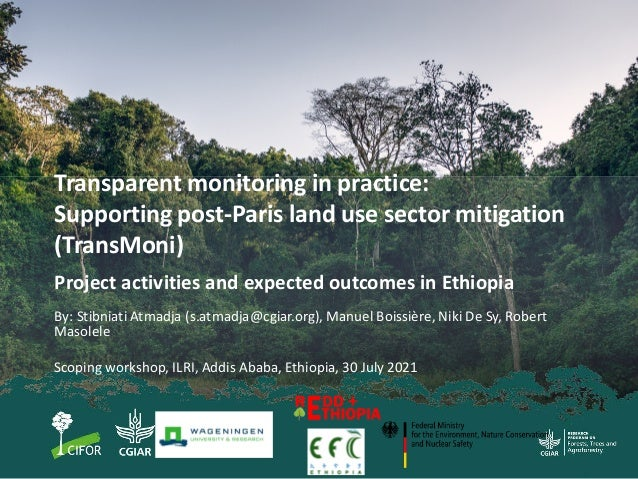 Transparent monitoring in practice: Supporting post-Paris land use sector mitigation (TransMoni) Project activities and ex...