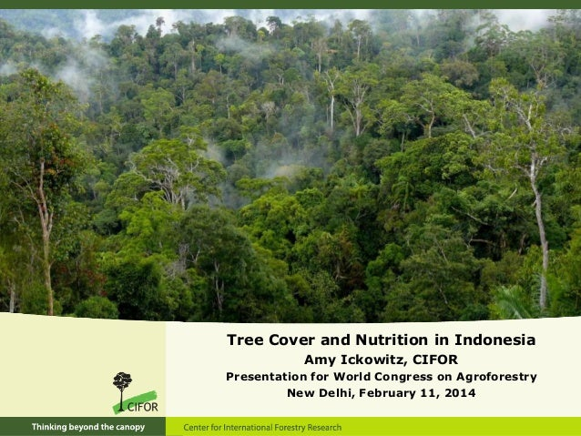 Tree Cover and Nutrition in Indonesia Amy Ickowitz, CIFOR Presentation for World Congress on Agroforestry New Delhi, Febru...