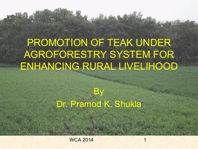 WCA 2014 1 PROMOTION OF TEAK UNDER AGROFORESTRY SYSTEM FOR ENHANCING RURAL LIVELIHOOD By Dr. Pramod K. Shukla