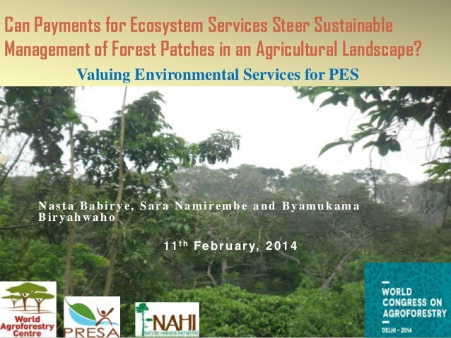 Can Payments for Ecosystem Services Steer Sustainable Management of Forest Patches in an Agricultural Landscape? Valuing E...