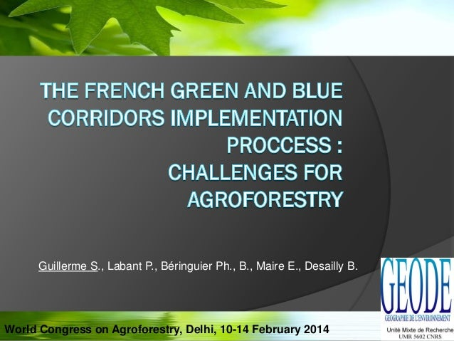 Guillerme S., Labant P., Béringuier Ph., B., Maire E., Desailly B. World Congress on Agroforestry, Delhi, 10-14 February 2...