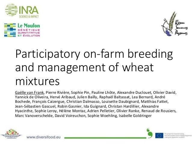 Participatory on-farm breeding and management of wheat mixtures GaëllevanFrank,PierreRivière,SophiePin,PaulineLhôt...
