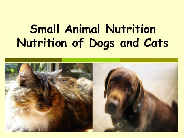 Small Animal Nutrition Nutrition of Dogs and Cats