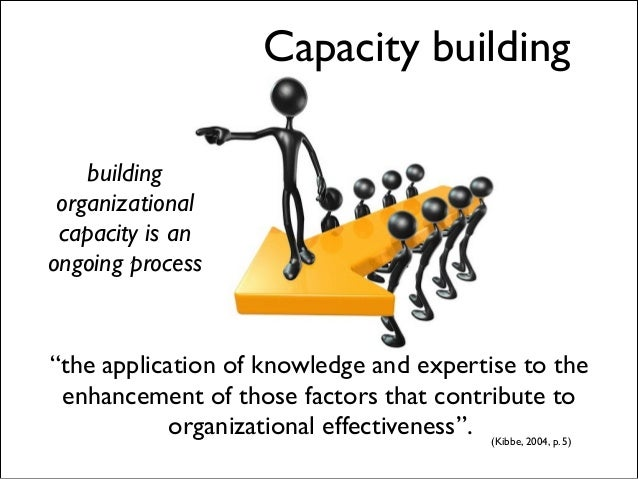 importance of capacity building in an organization