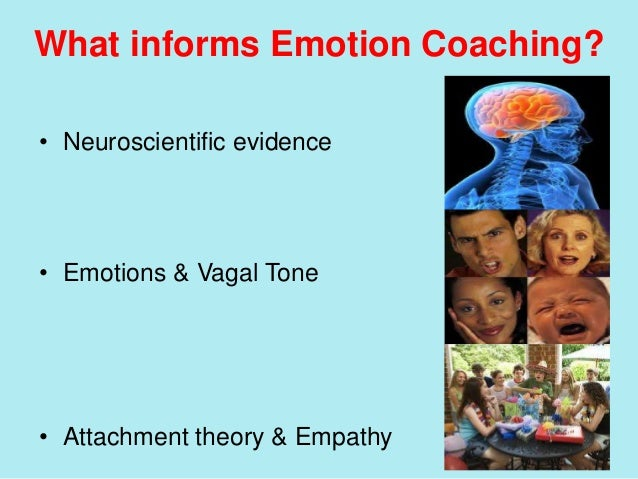 How Theory Informs Practice: Situational Crisis Communication Theory