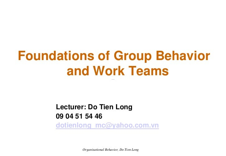 Foundations of Group Behavior        and Work Teams       Lecturer: Do Tien Long      09 04 51 54 46      dotienlong_mc@ya...