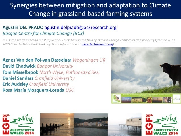 Synergies between mitigation and adaptation to Climate Change in grassland-based farming systems Agustin DEL PRADO agustin...