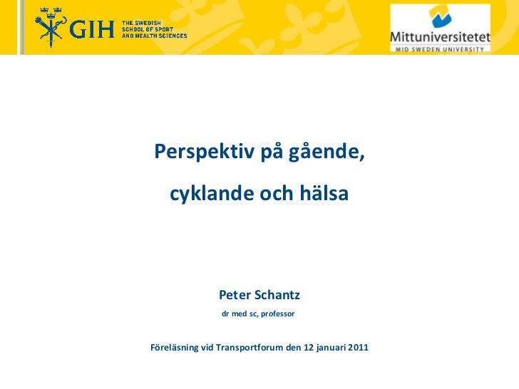 Perspektiv på gående,  cyklande och hälsa Peter Schantz dr med sc, professor   Föreläsning vid Transportforum den 12 janua...