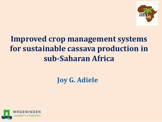 Improved crop management systems for sustainable cassava production in sub-Saharan Africa Joy G. Adiele