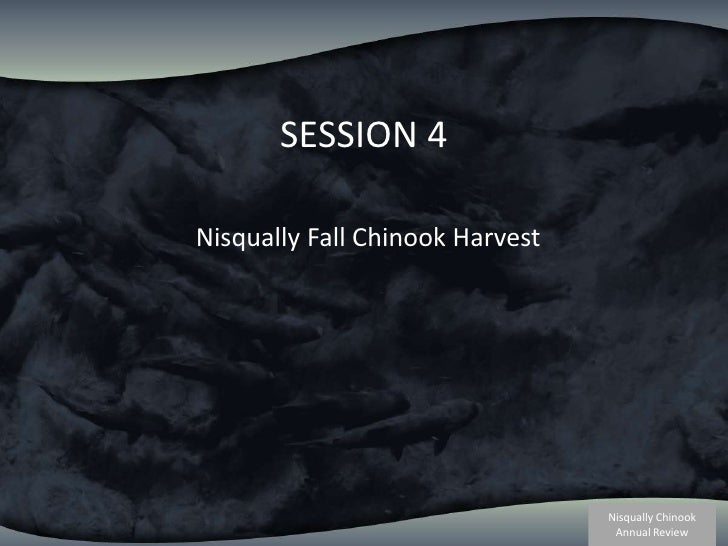 SESSION 4<br />Nisqually Fall Chinook Harvest<br />