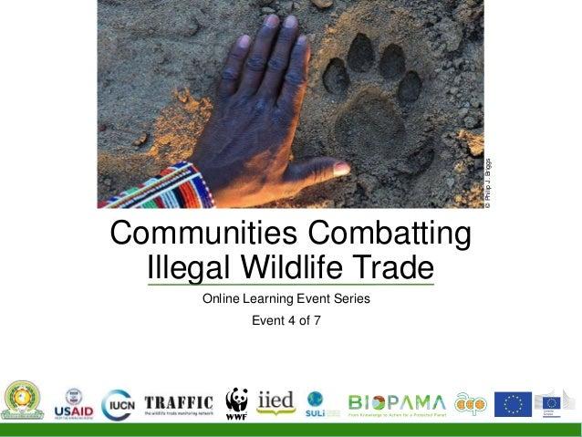 Communities Combatting Illegal Wildlife Trade Online Learning Event Series Event 4 of 7 ©PhilipJ.Briggs