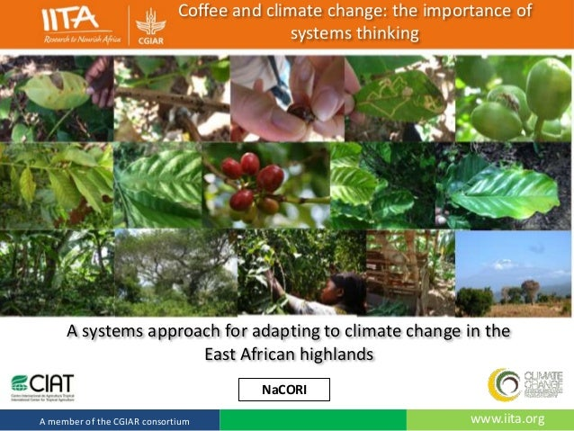 Coffee and climate change: the importance of systems thinking  A systems approach for adapting to climate change in the Ea...