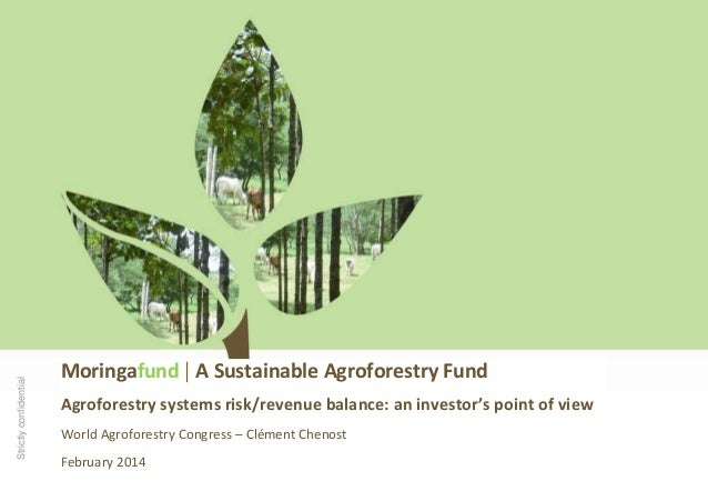 Strictly confidential  Moringafund | A Sustainable Agroforestry Fund Agroforestry systems risk/revenue balance: an investo...