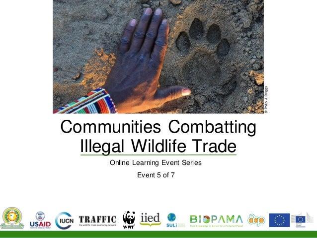 Communities Combatting Illegal Wildlife Trade Online Learning Event Series Event 5 of 7 ©PhilipJ.Briggs