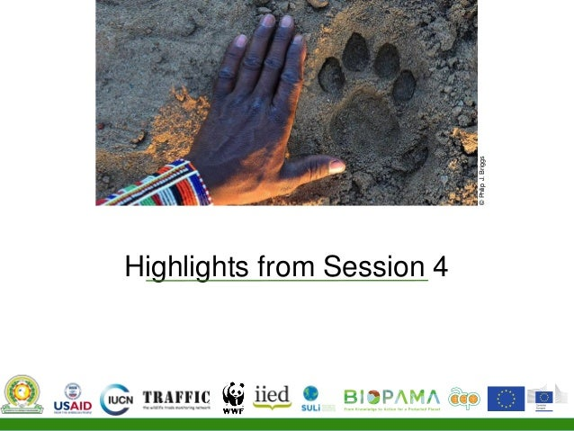 Communities Combating Illegal Wildlife Trade session five Slide 2