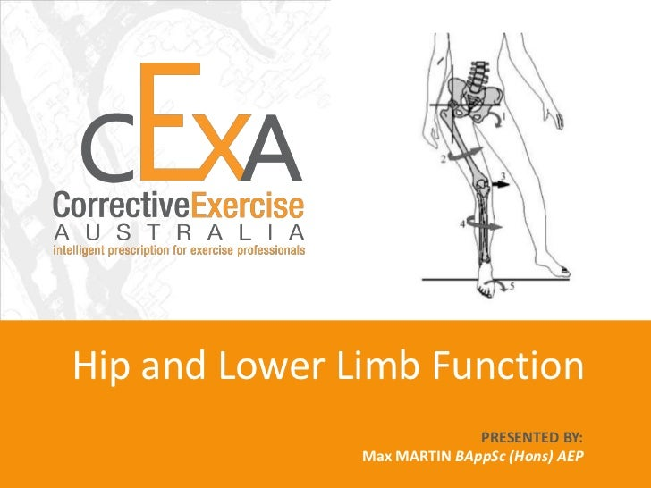 iNform ACADEMY Hip and Lower Limb Function PRESENTED BY:  Max MARTIN BAppSc (Hons) AEP Scott WOOD BAppSc AEP