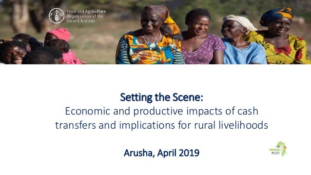 Setting the Scene: Economic and productive impacts of cash transfers and implications for rural livelihoods Arusha, April ...