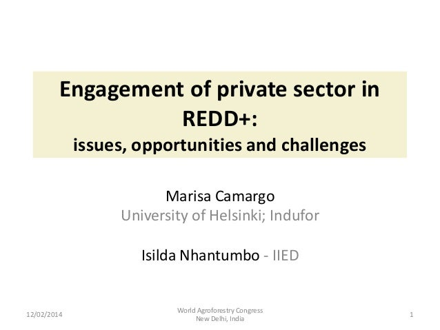 Engagement of private sector in REDD+: issues, opportunities and challenges Marisa Camargo University of Helsinki; Indufor...