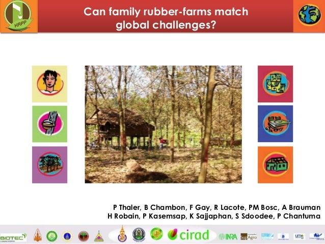 Can family rubber-farms match global challenges?  P Thaler, B Chambon, F Gay, R Lacote, PM Bosc, A Brauman H Robain, P Kas...