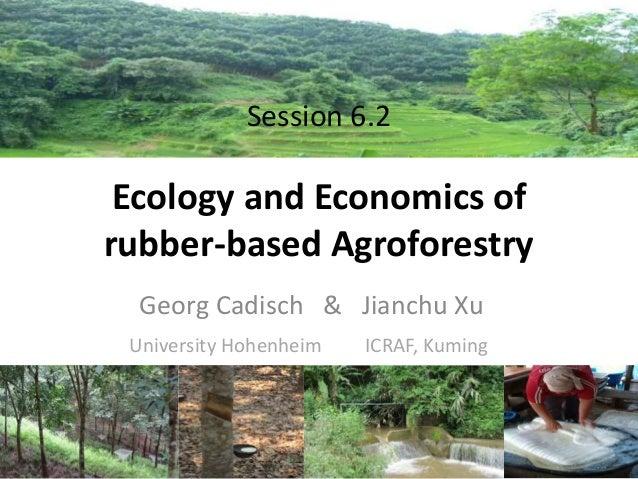 Session 6.2  Ecology and Economics of rubber-based Agroforestry Georg Cadisch & Jianchu Xu University Hohenheim  ICRAF, Ku...