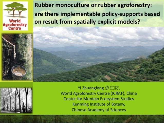Rubber monoculture or rubber agroforestry: are there implementable policy-supports based on result from spatially explicit...
