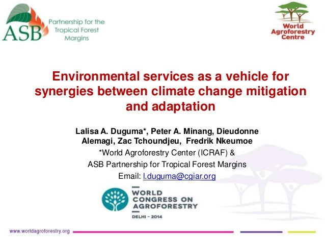 Environmental services as a vehicle for synergies between climate change mitigation and adaptation Lalisa A. Duguma*, Pete...