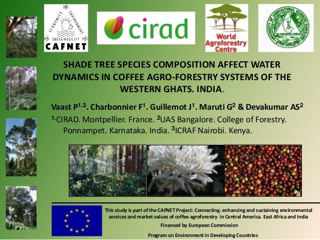 SHADE TREE SPECIES COMPOSITION AFFECT WATER DYNAMICS IN COFFEE AGRO-FORESTRY SYSTEMS OF THE WESTERN GHATS. INDIA. Vaast P1...