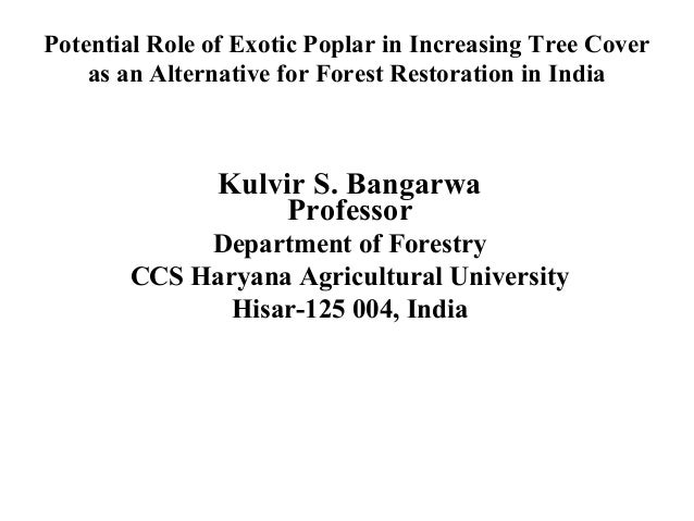 Potential Role of Exotic Poplar in Increasing Tree Cover as an Alternative for Forest Restoration in India  Kulvir S. Bang...
