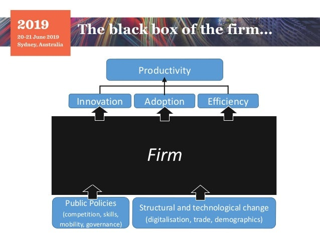 The black box of the firm… Firm Adoption Productivity Public Policies (competition, skills, mobility, governance) Structur...
