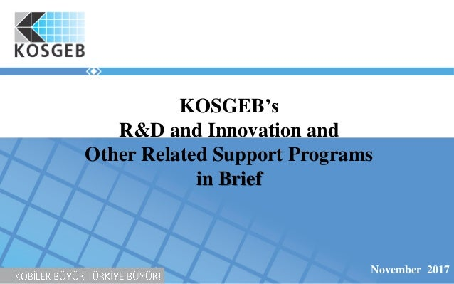 KOSGEB's R&D and Innovation and Other Related Support Programs in Brief November 2017