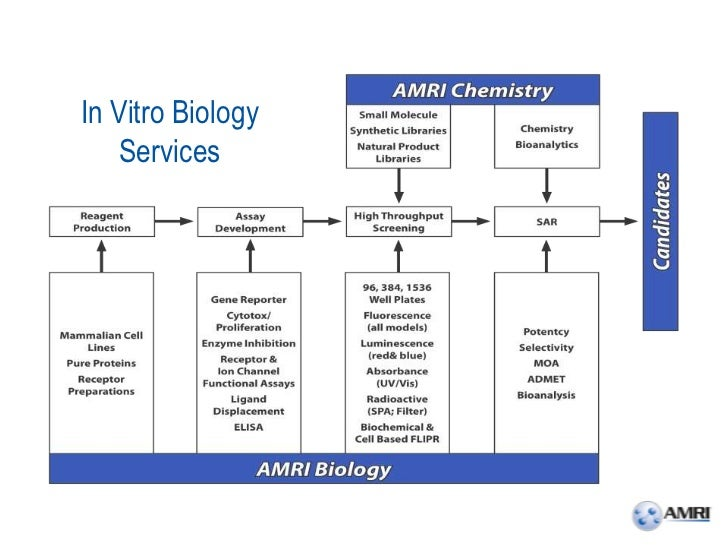 In Vitro Biology    Services