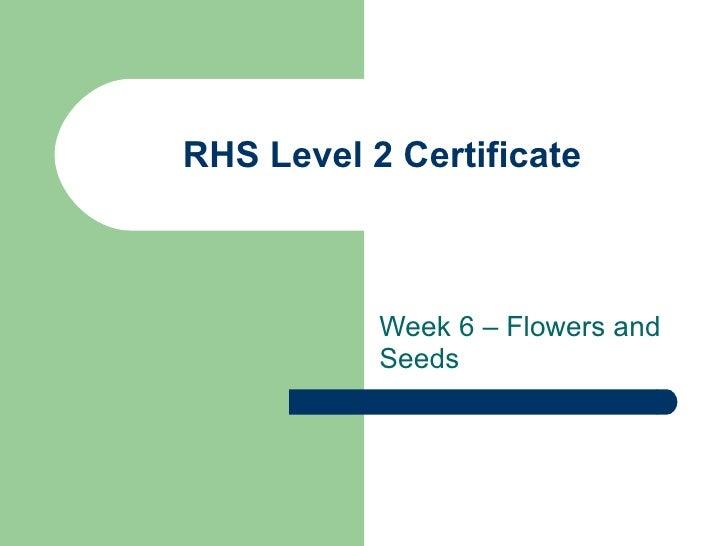 RHS Level 2 Certificate Week 6 – Flowers and Seeds