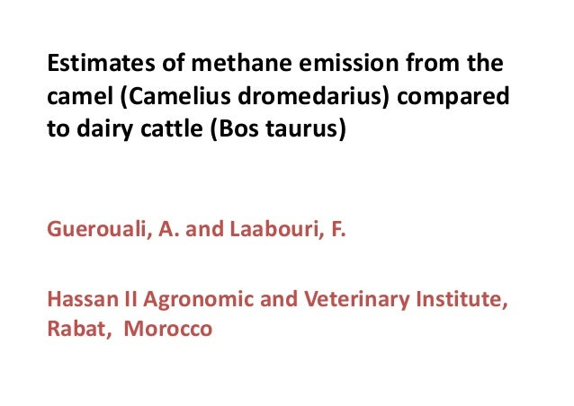 Estimates of methane emission from the camel (Camelius dromedarius) compared to dairy cattle (Bos taurus)  Guerouali, A. a...