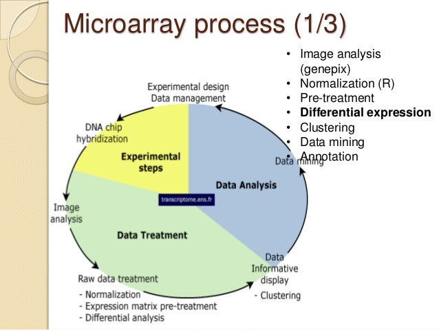 data mining techniques in dna microarray data Dna microarrays and gene expression: from experiments of the analysis of microarray data of modern heuristics and data mining techniques in.