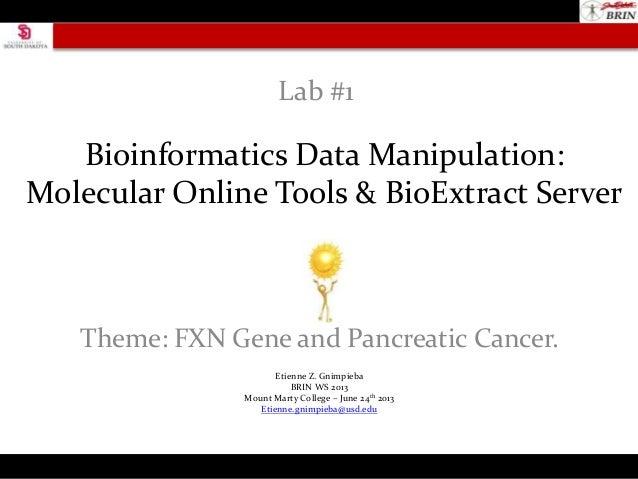 Bioinformatics Data Manipulation:Molecular Online Tools & BioExtract ServerTheme: FXN Gene and Pancreatic Cancer.Lab #1Eti...