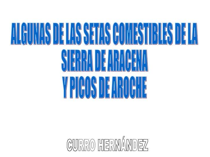 ALGUNAS DE LAS SETAS COMESTIBLES DE LA  SIERRA DE ARACENA Y PICOS DE AROCHE CURRO HERNÁNDEZ