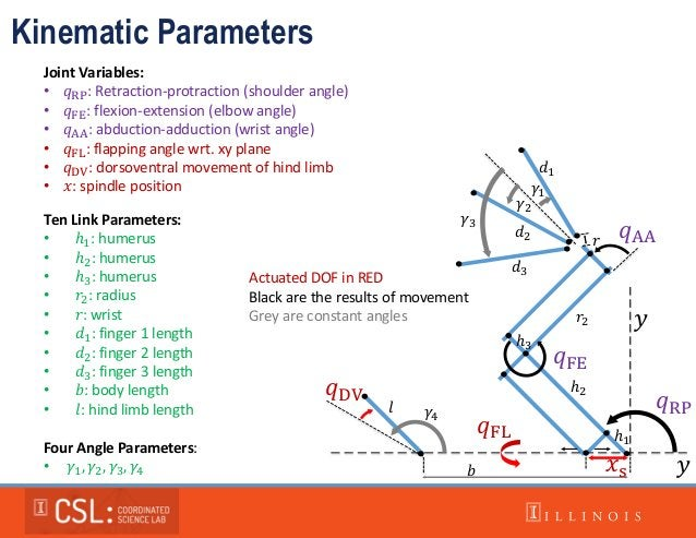 Kinematic Parameters 𝑞RP 𝑞FE 𝑞AA 𝑞DV 𝑥s 𝑞FL 𝛾1 𝛾2 𝛾3 𝛾4 ℎ1 ℎ2 ℎ3 𝑟2 𝑑1 𝑑2 𝑑3 𝑟 𝑙 𝑏 𝑦 𝑦 Actuated DOF in RED Black are the r...