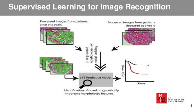 Supervised Learning for Image Recognition 8