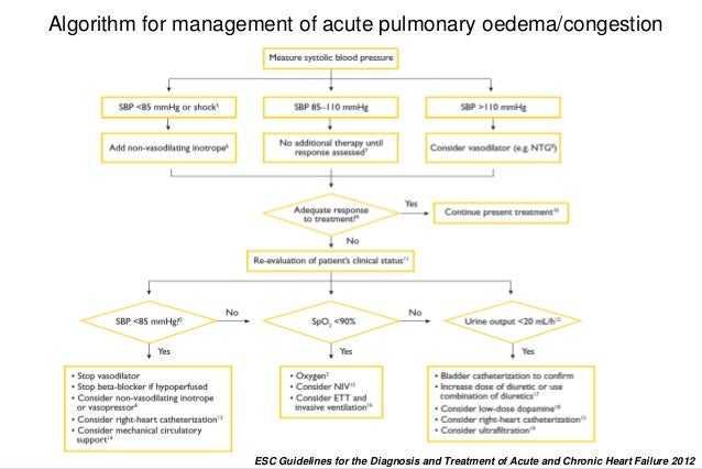 Setting The Stage Review Of The Esc Acute Heart Failure Guidelines