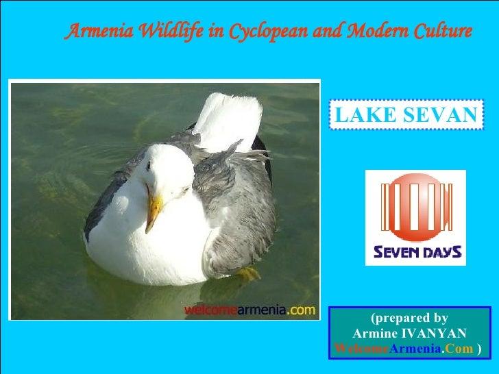 LAKE SEVAN Armenia Wildlife in Cyclopean and Modern Culture (prepared by Armine IVANYAN Welcome Armenia . Com  )