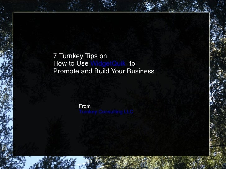 7 Turnkey Tips on  How to Use  WidgetQuik   to  Promote and Build Your Business From  Turnkey Consulting LLC